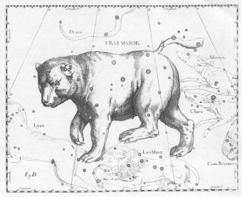 orsa maggiore